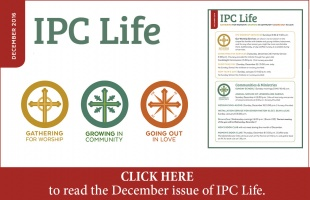 IPC Life Small Square DECEMBER