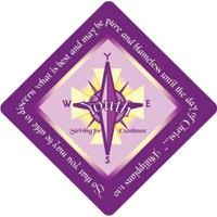 Youth Striving For Excellence Logo